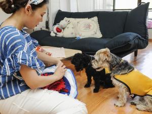 [다녀왔습니다!] 휴가철 반려동물 돌봄 서비스 '도그메이트(Dog mate)'